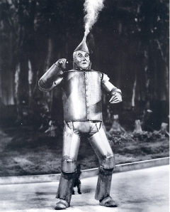 pic07tin-man